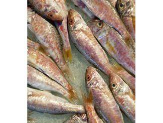 Choosing fresh fish