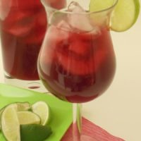 Hibiscus Lime Punch