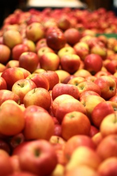 How to Cook with Fall's Apple Bounty