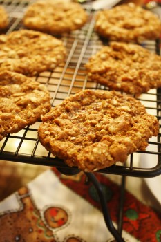 Anzac Biscuits - Christmas Cookies from Around the World