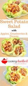Sweet Potato Salad with Apples, Cranberries & Pecans